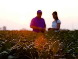 American Soybean Association - Meeting Agricultural Needs