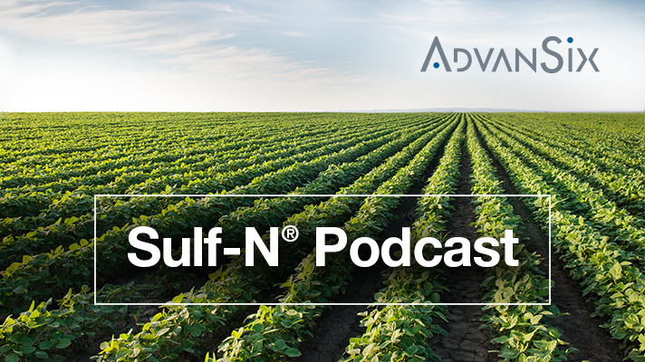 Sulf-N Podcast: Rethinking Soybean Nutrition Management