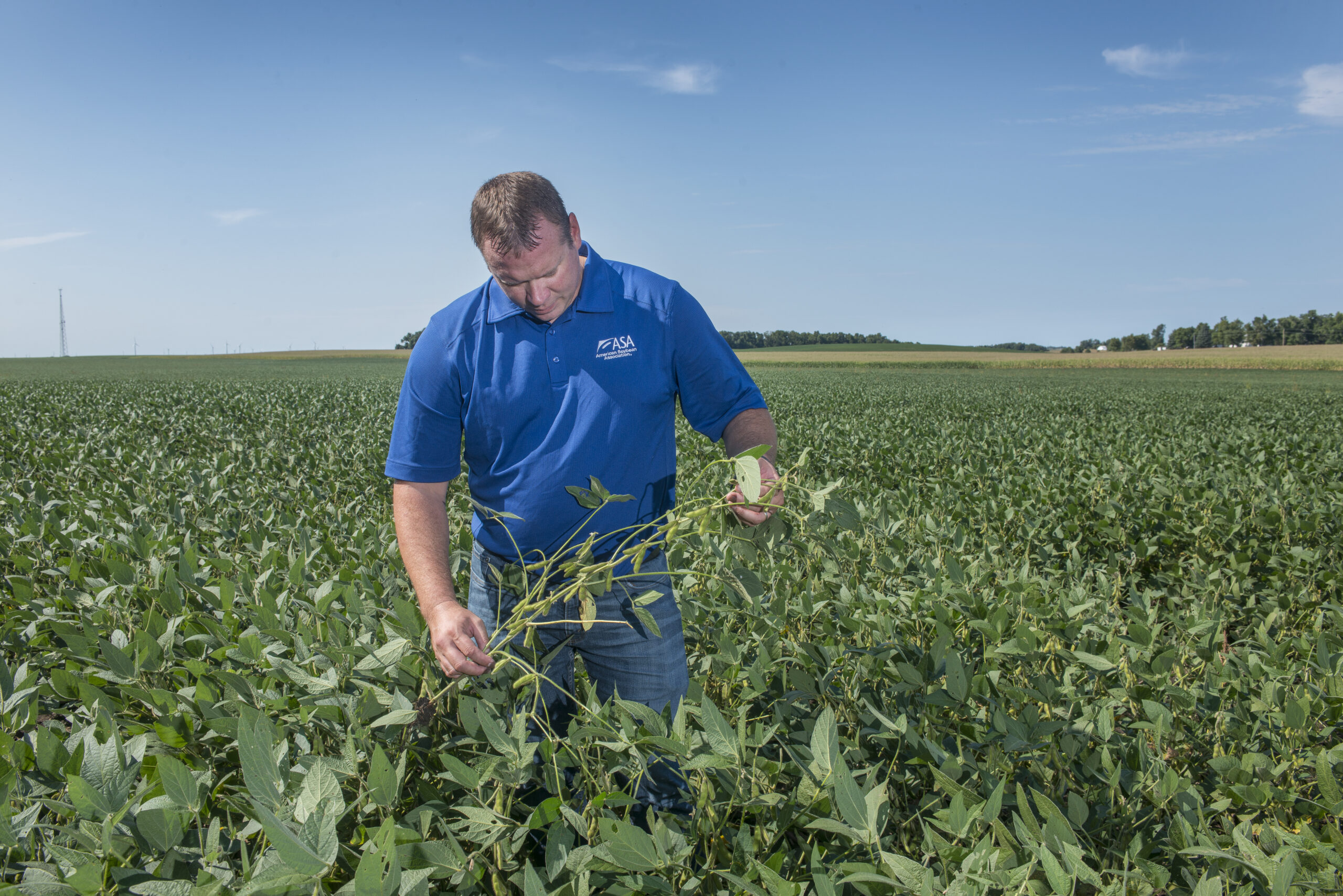 It's More than Conservation: ASA pushes expanded soybean sustainability agenda