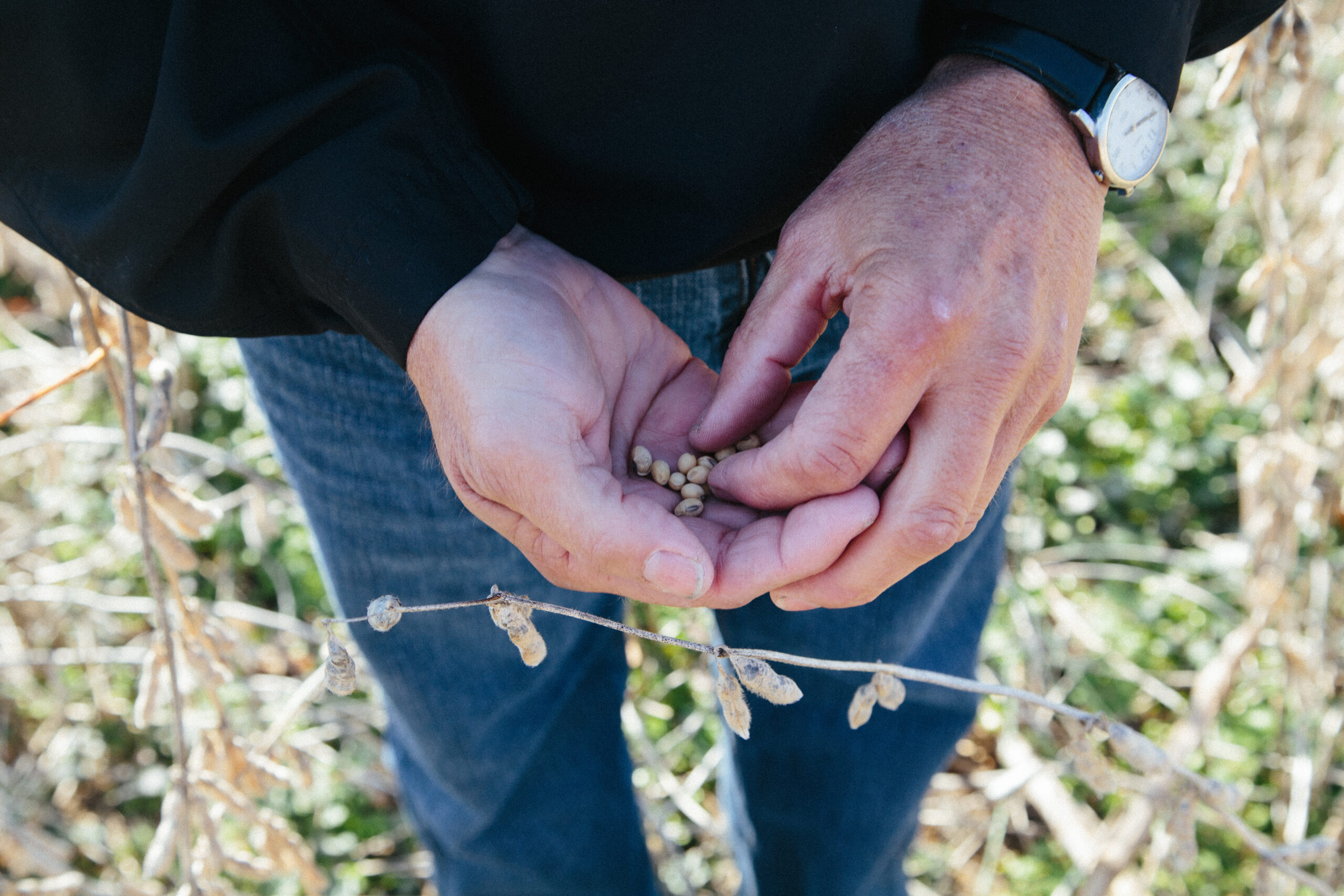 Sustainability: Farmers Take the Lead on Climate Change